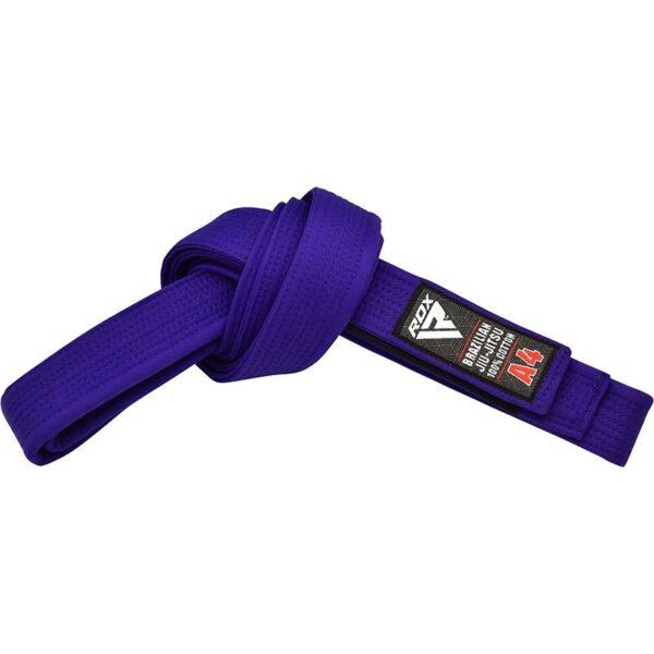1u jiu jitsu bjj blue belt 2